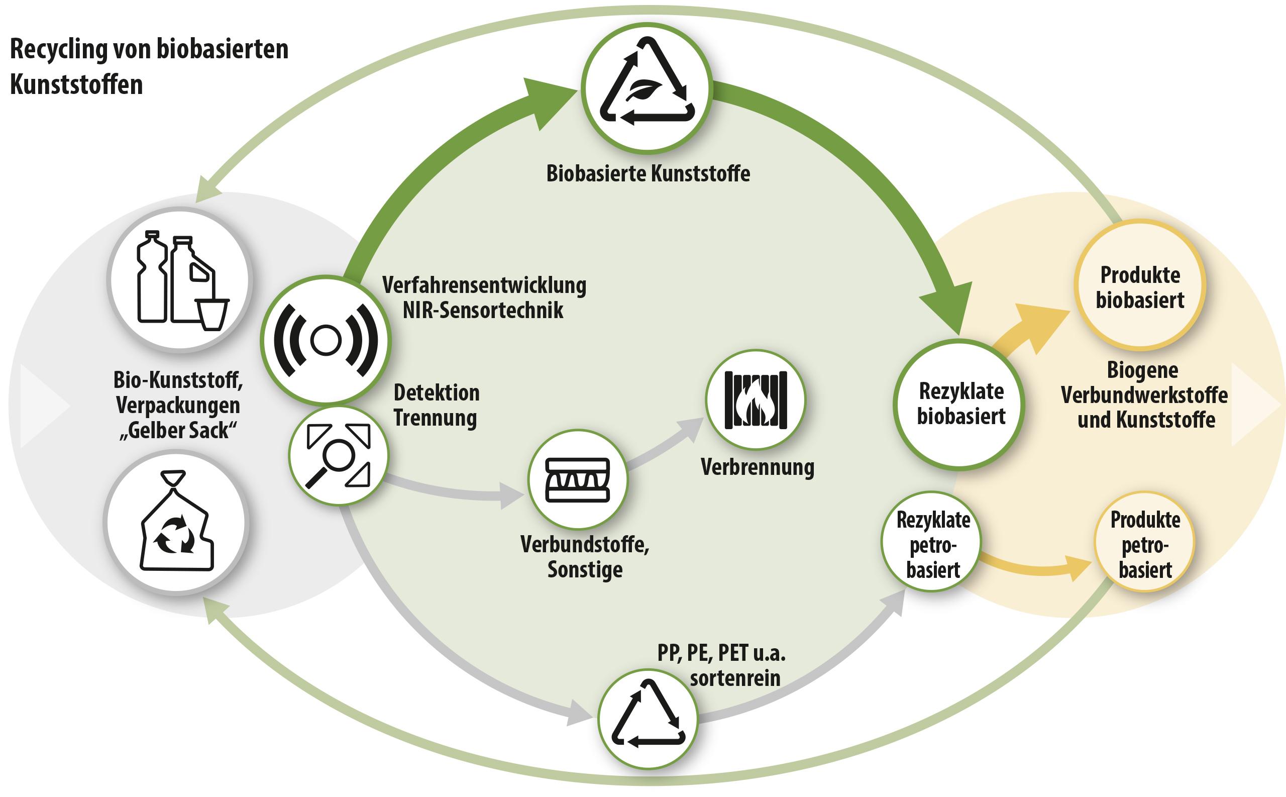 Verfahrensansatz zur Gewinnung biobasierter Rezyklate durch die Entwicklung geeigneter Sortiersensorik.